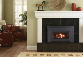 Regency Energy Small Gas Insert